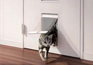 ペット用ドアで愛犬も喜びます