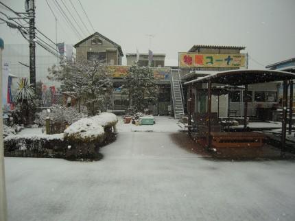雪の展示場